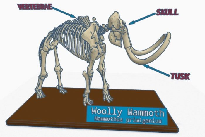 Image of woolly mammoth in tinkercad
